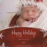 Happy Holidays & Happy New Year 2013